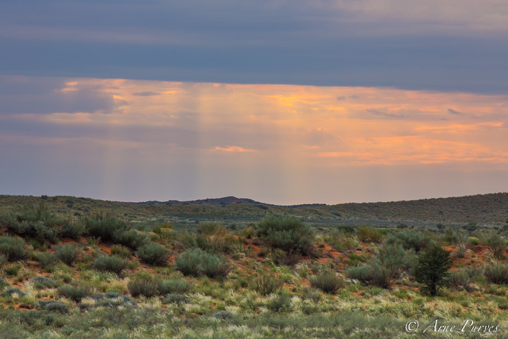 A rainstorm over the Kgalagadi