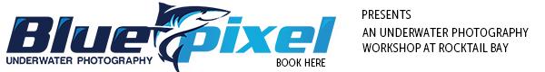 BluePixel Photography Tours