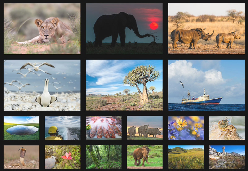 African Conservation Photography Purchase