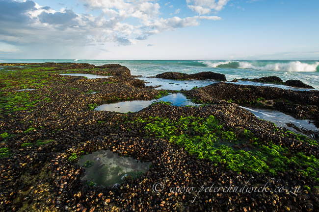 De Hoop Intertidal Rock Platforms by wildlife and conservation photographer Peter Chadwick