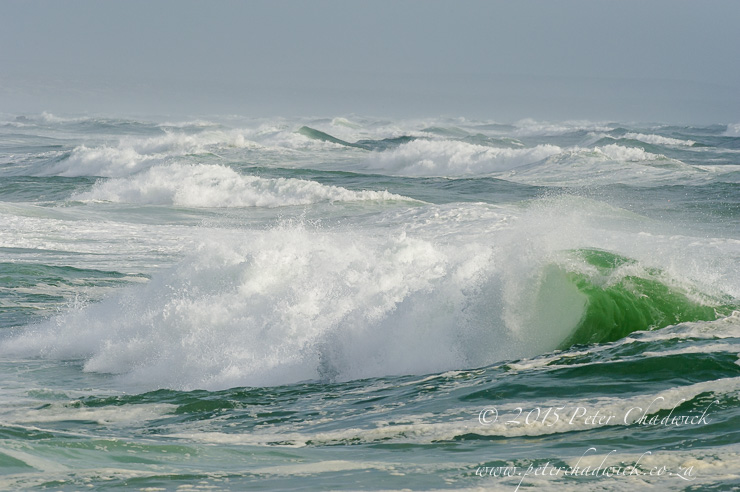 Rolling waves along the 16-mile beach MPA_PeterChadwick_AfricanConservationPhotographer