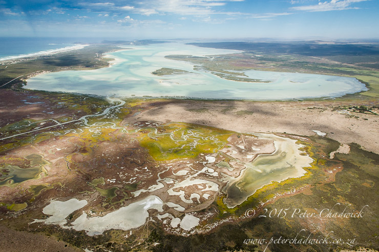 Salt Marshes of the Langebaan Lagoon_PeterChadwick_AfricanConservationPhotographer