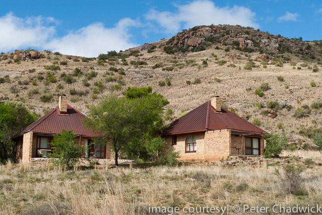 mt zebra nat park accomodation units by wildlife and conservation photographer peter chadwick
