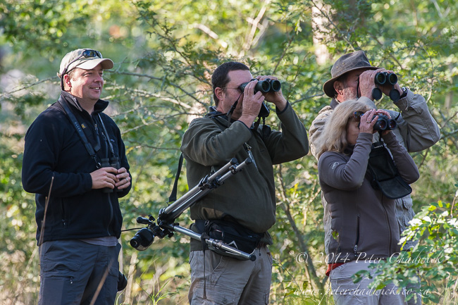 Birdwatching around Panda by wildlife and conservation photographer Peter Chadwick