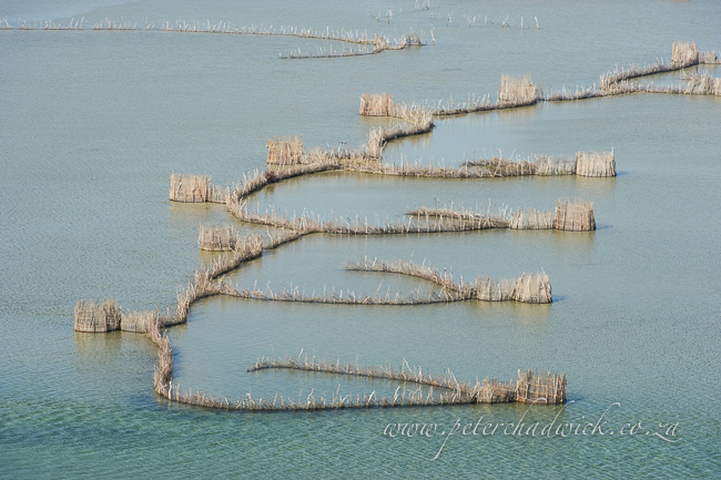 Kozi Bay Fish Traps by wildlife and conservation photographer Peter Chadwick
