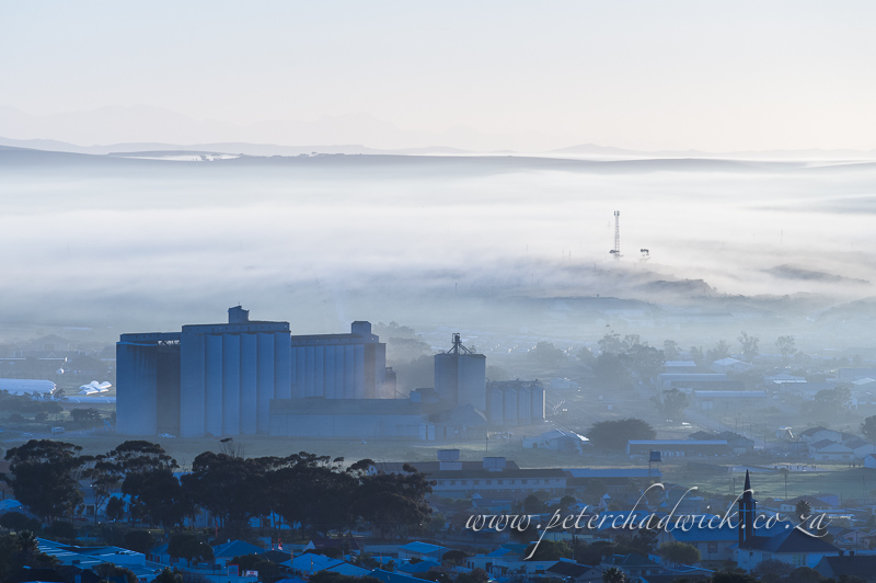 bredasdorp grain silos by wildlife and conservation photographer Peter Chadwick