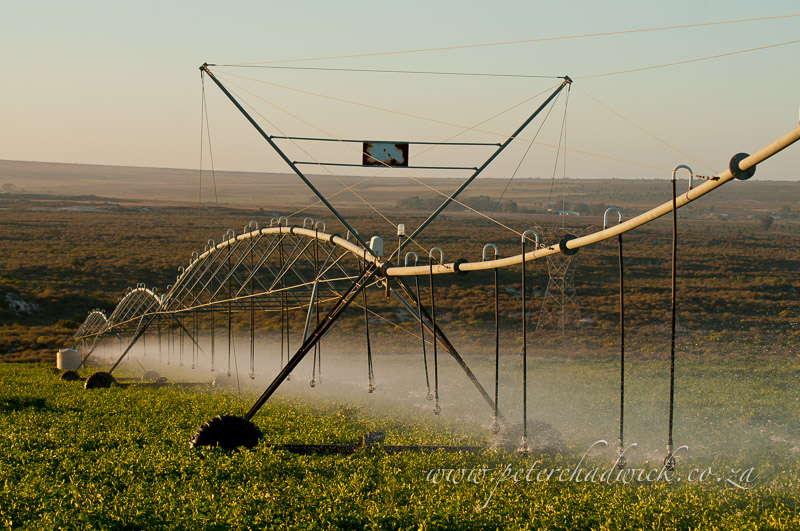 pivot crop sprayer by wildlife and conservation photographer Peter Chadwick
