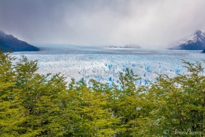 Green and Blue - Perito Moreno Glacier