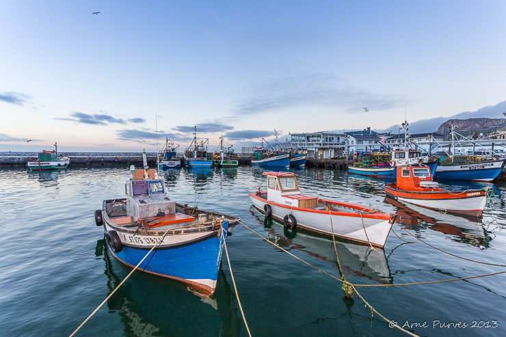 Fishing fleet in Kalk Bay Harbour. False Bay, Cape Town