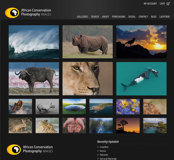 African Conservation Photography Images Purchasing