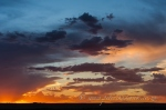 Benfontein sunset by wildlife and conservation photographer Peter Chadwick.jpg