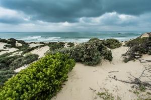 False Bay coastline at Mnandi Beach | Wolfgat Nature Reserve ©Arne Purves