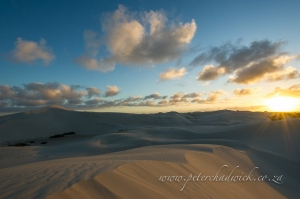 De Hoop dune fields by wildlife and conservation photographer Peter Chadwick