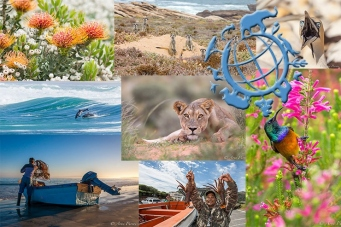World Wildlife Day 2014   #conservationphotography   African Conservation Photodestinations